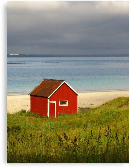 Lofoten Islands, Norway by Fin Gypsy