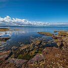 Beaumaris Bay Rocky Shore by Greg Earl
