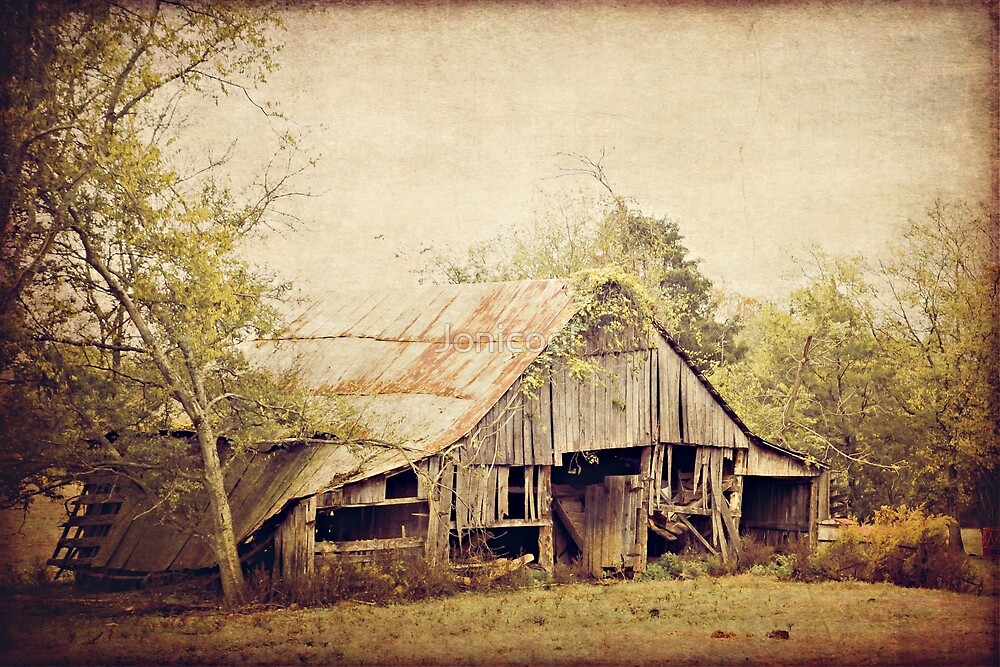 Old Country Barn by Jonicool