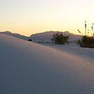 Dune by BLAMB