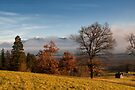Autumn Colours in Bavaria by Kasia-D