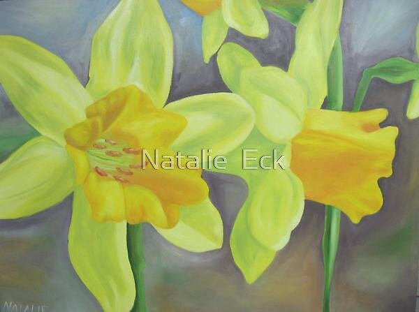 Daffodils by Natalie  Eck
