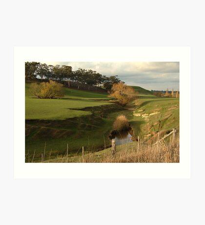 Green Pasture,Daylesford District Art Print