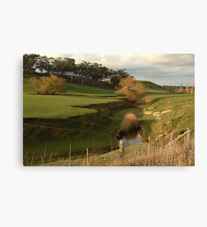 Green Pasture,Daylesford District Canvas Print