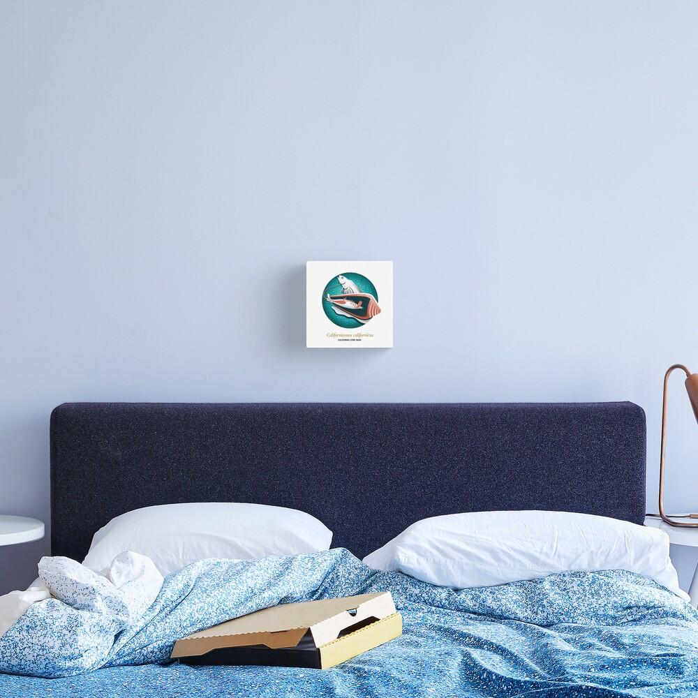 The Circles of Life: California Cone Snail Canvas Print
