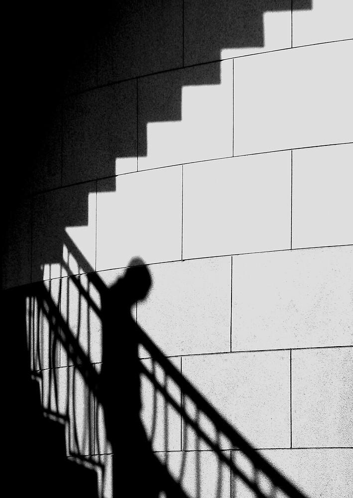 Descending by Elizabeth McPhee