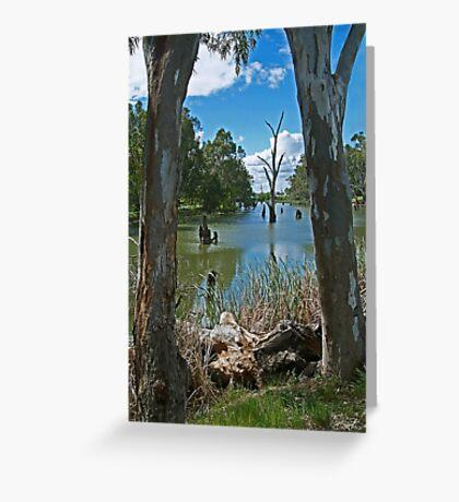 Campaspe River,Elmore Greeting Card