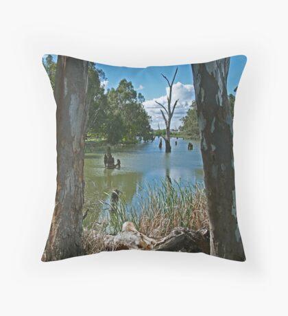 Campaspe River,Elmore Throw Pillow