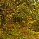 Autumn Bloom by Tsitra
