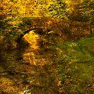 Autumn Crossing by Tsitra