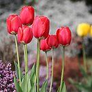 I Love Spring by Pinkanna1980