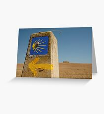On the road to Compostela Greeting Card