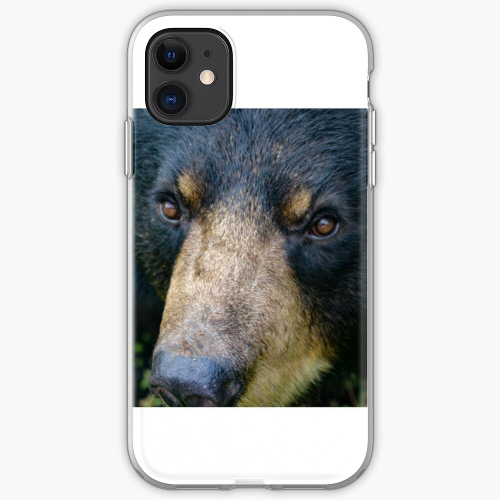 Bear close up iPhone Case & Cover
