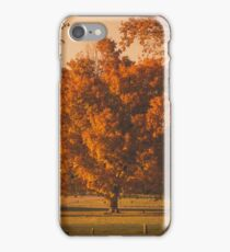 Fall Tree iPhone Case/Skin