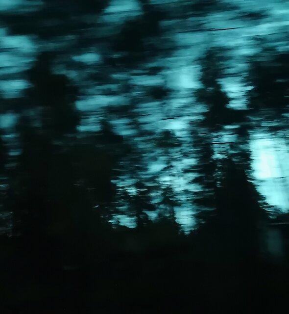 Dark Woods III by lab7115