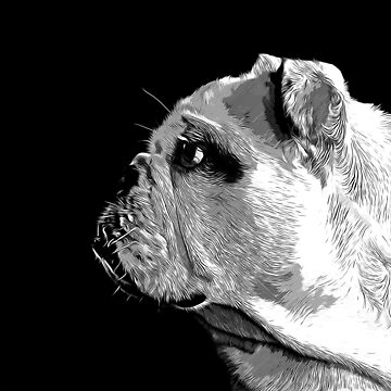 gxp english bulldog dog vector art black white by gxp-design