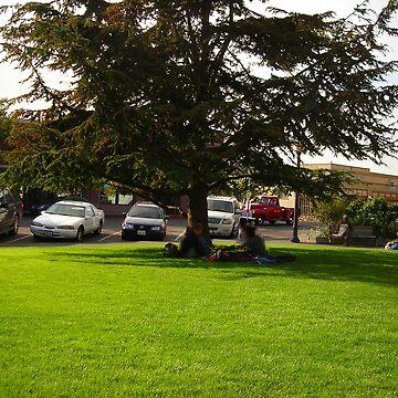 Grassy green Park by Dragoncat