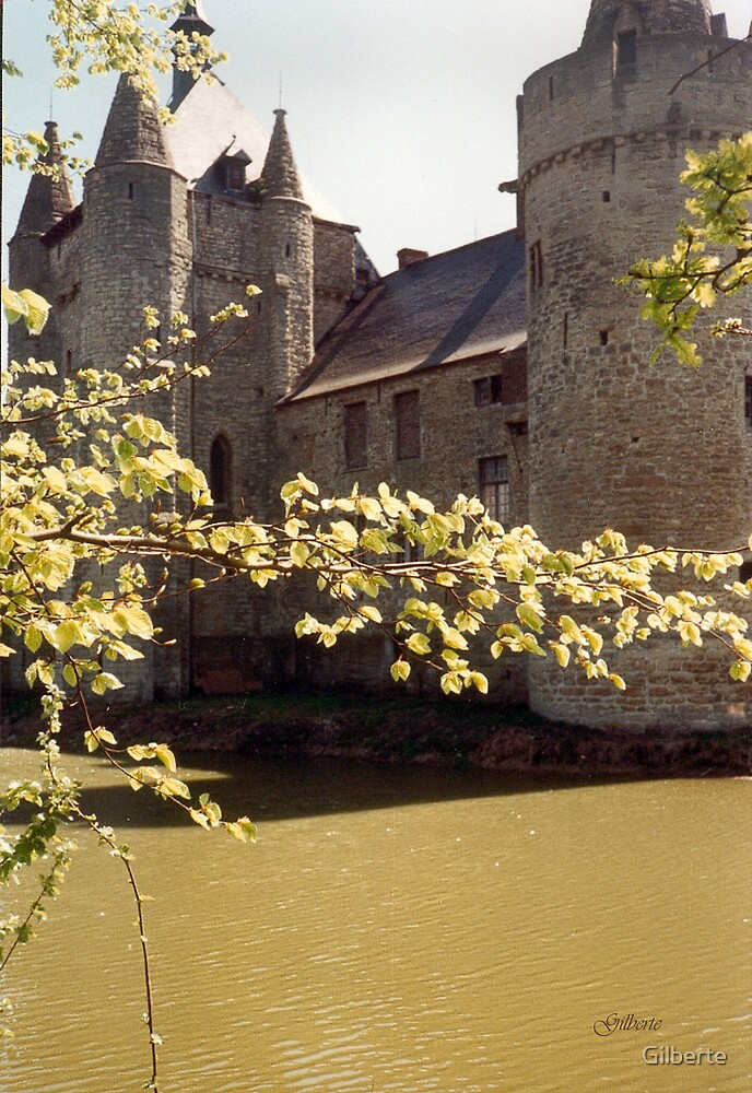 The Moat - Laarne Castle - Belgium by Gilberte