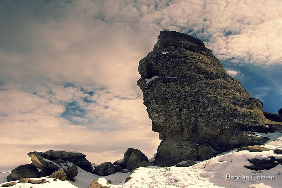 The Sphinx by Bogdan Ciocsan