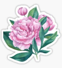Watercolor Peony Bouquet Sticker