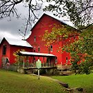 Rockbridge Mill by Terence Russell