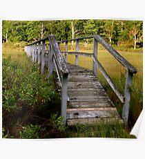 Marsh Bridge/ Wooden Walkway Poster