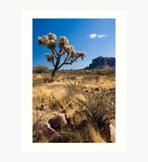 superstition mountains Art Print