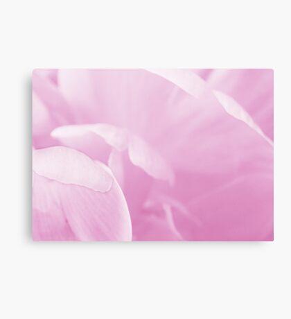 Peony Petals Canvas Print