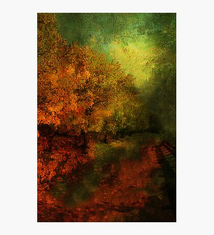 Fall Road To Renewal Photographic Print