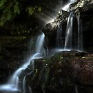 Cascade in Profile - Somersby Falls by Jeff Catford