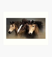 Equine Dreams Horse Portrait Art Print