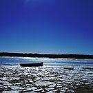 Winter Row Boat by raneangel