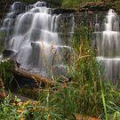 Wild Waterfall by Chintsala