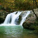 Falls Creek Falls by Lisa G. Putman