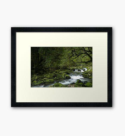 Riwaka River, Tasman bay, New Zealand Framed Print