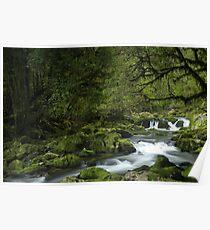 Riwaka River, Tasman bay, New Zealand Poster