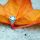 Leafy Jewel by ReveLinWonder