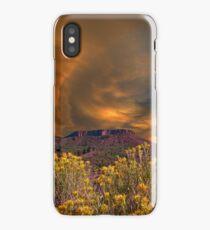 3867 iPhone Case