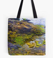 Rocks with Lichen Tote Bag