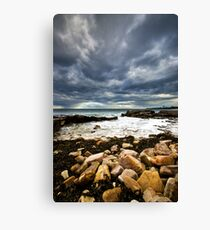 Seaweed & Rocks Canvas Print