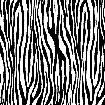 Vegan Zebra Fur Animal Print Design (Black) by taiche