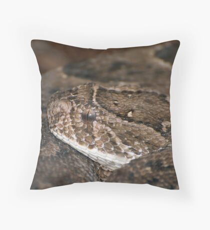SSSSsssss!! Throw Pillow