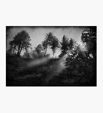 The Revelation of Ancient Whispers Photographic Print
