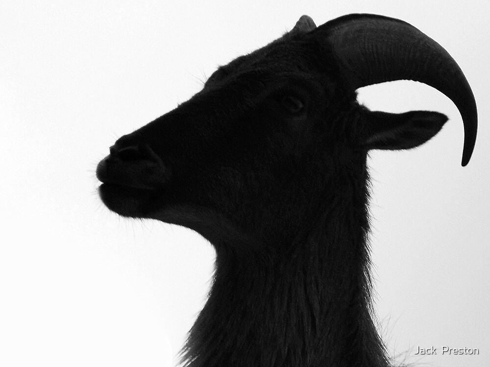 Goat's Head by Jack  Preston