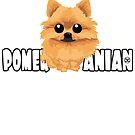 Pomeranian (Orange) - DGBigHead by DoggyGraphics