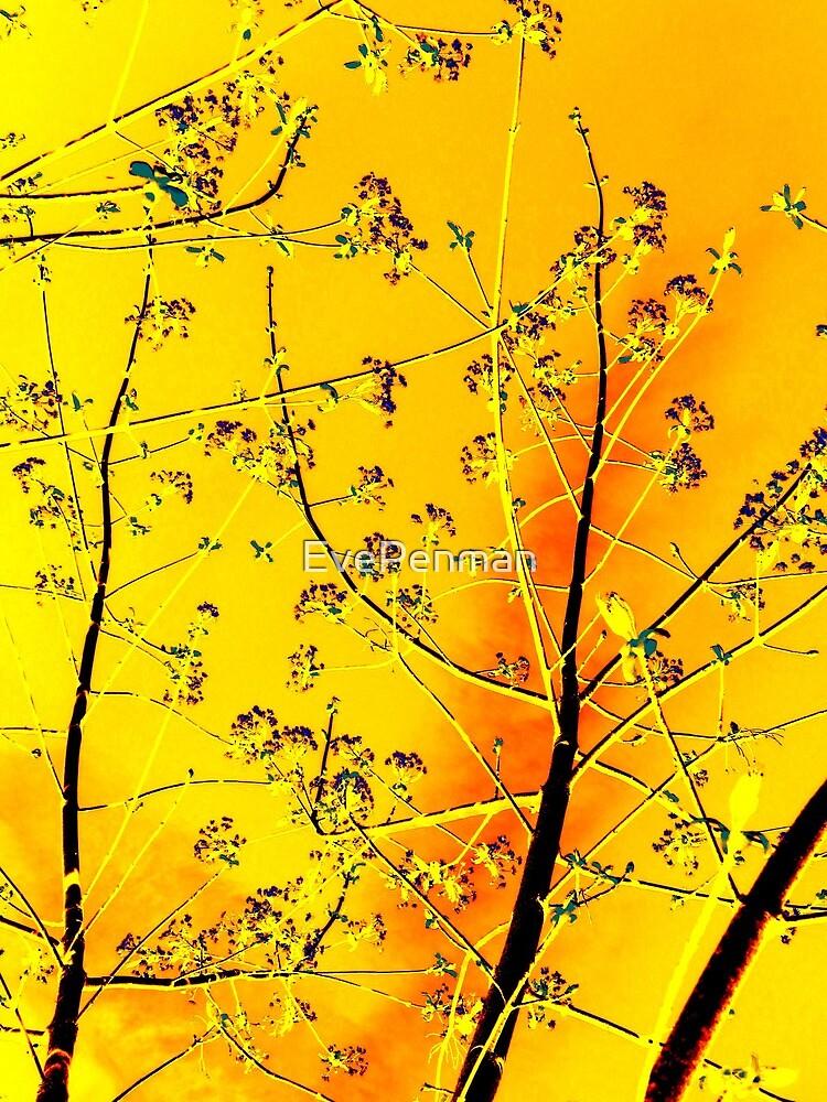 Bohemian Beauty Autumn Gold by EvePenman