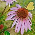 Echinacea (Coneflower) with Butterfly by Dai Wynn