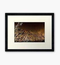 France - Normandie Framed Print