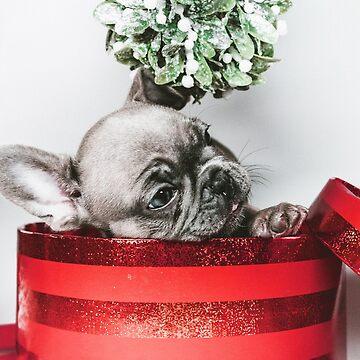 Christmas Puppy by RedAngelDesigns