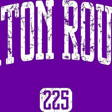 Baton Rouge 225 (White Print) by smashtransit